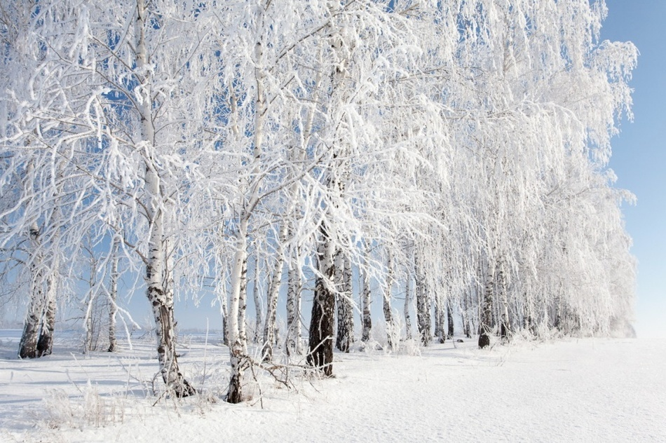 Winter in Russia is harsh and incredibly beautiful 03