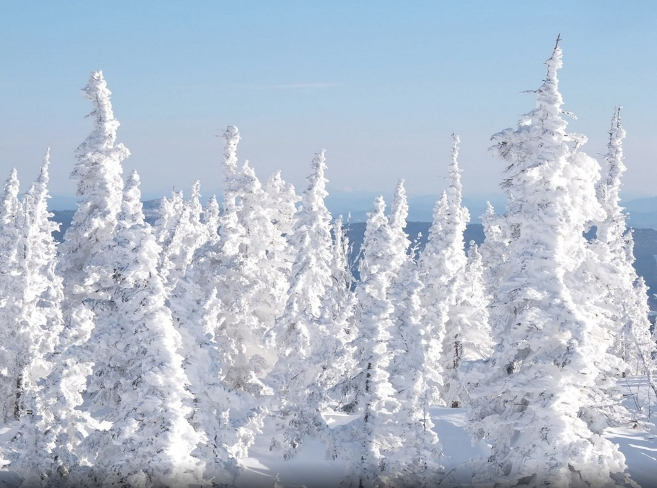 Winter in Russia is harsh and incredibly beautiful 09