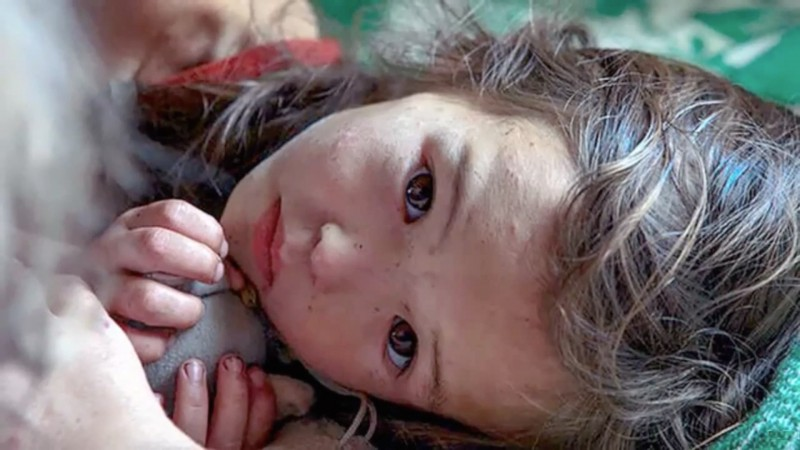 3-year-old girl lost in the woods, 11 days helped her to survive her faithful friend 06