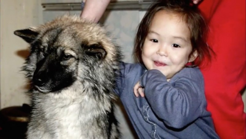 3-year-old girl lost in the woods, 11 days helped her to survive her faithful friend 08