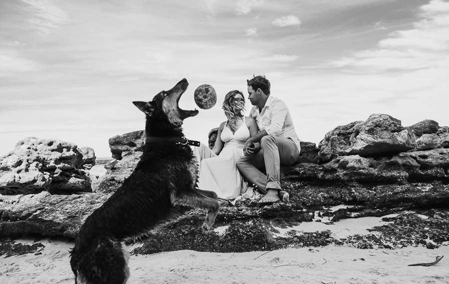 80 of the best wedding photos the world for 2015_10