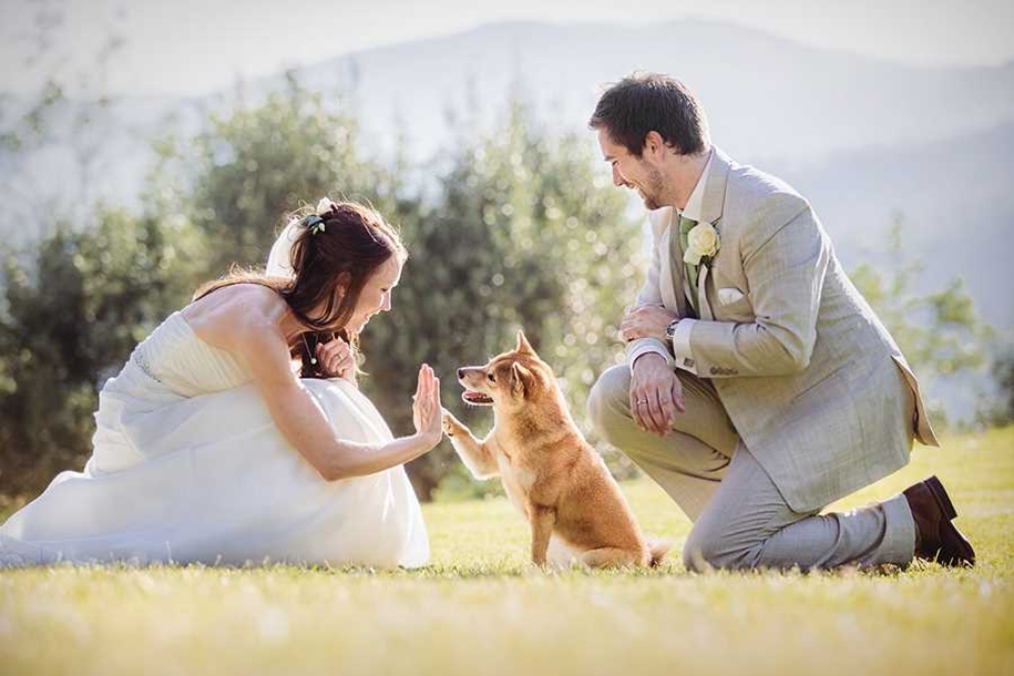 80 of the best wedding photos the world for 2015_30