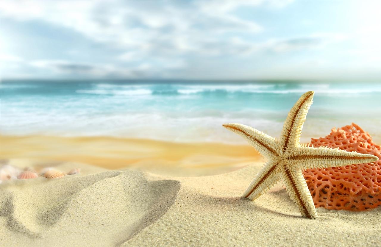 Beautiful beaches 17