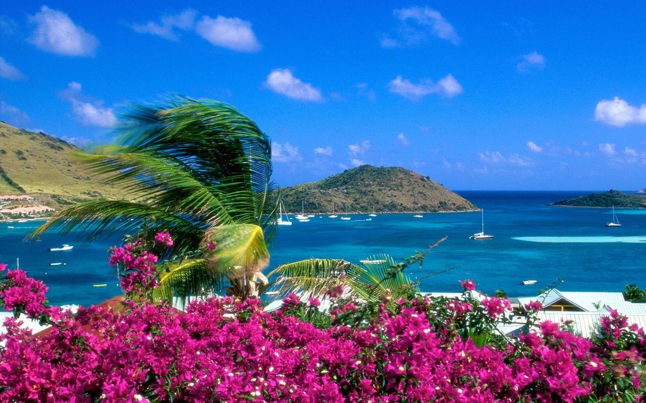 Beautiful beaches 18