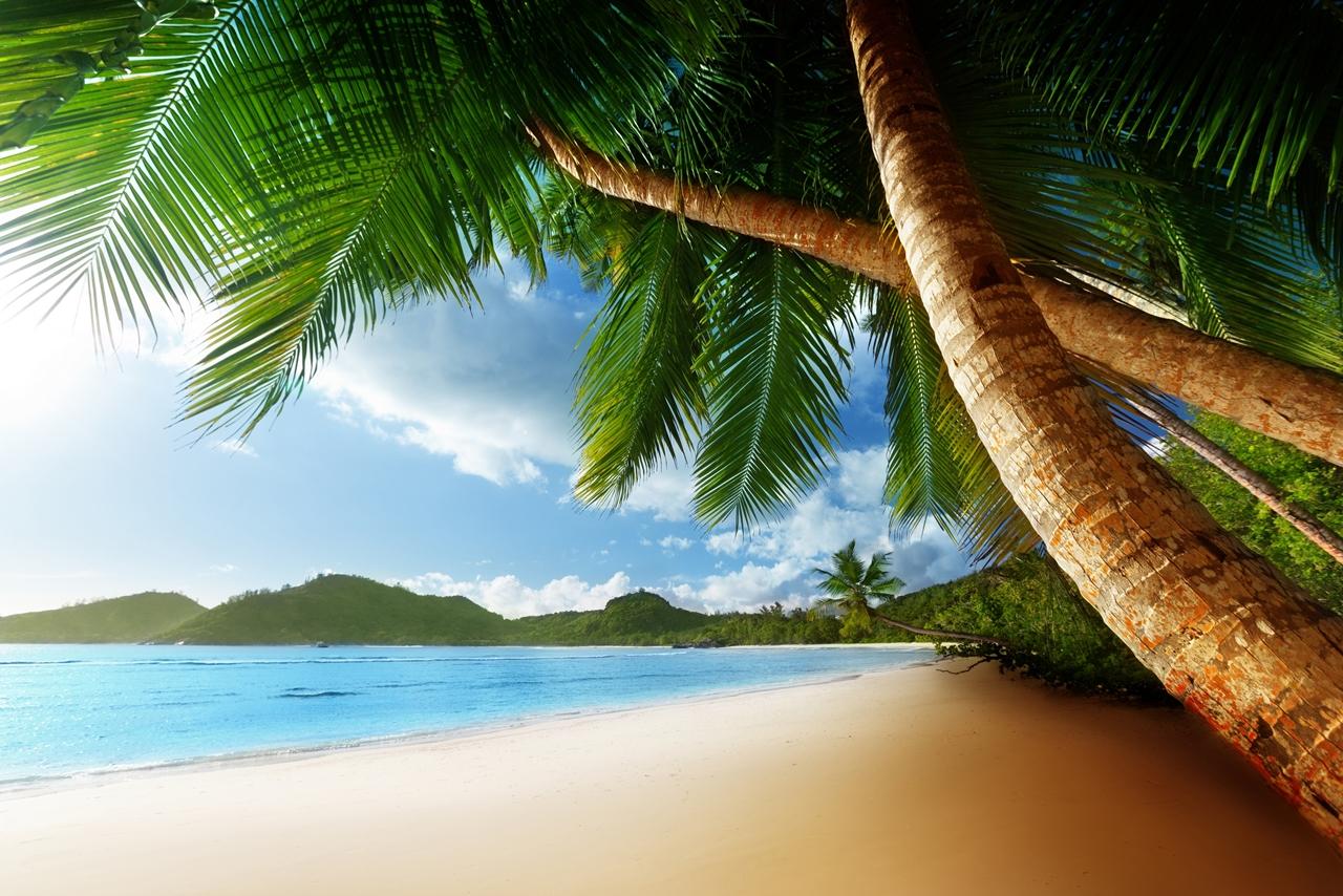 Beautiful beaches 21
