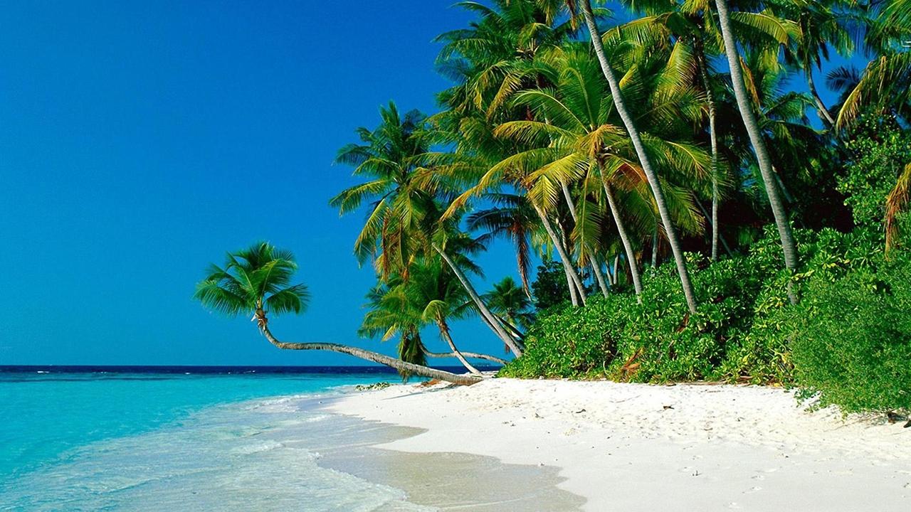 Beautiful beaches 22