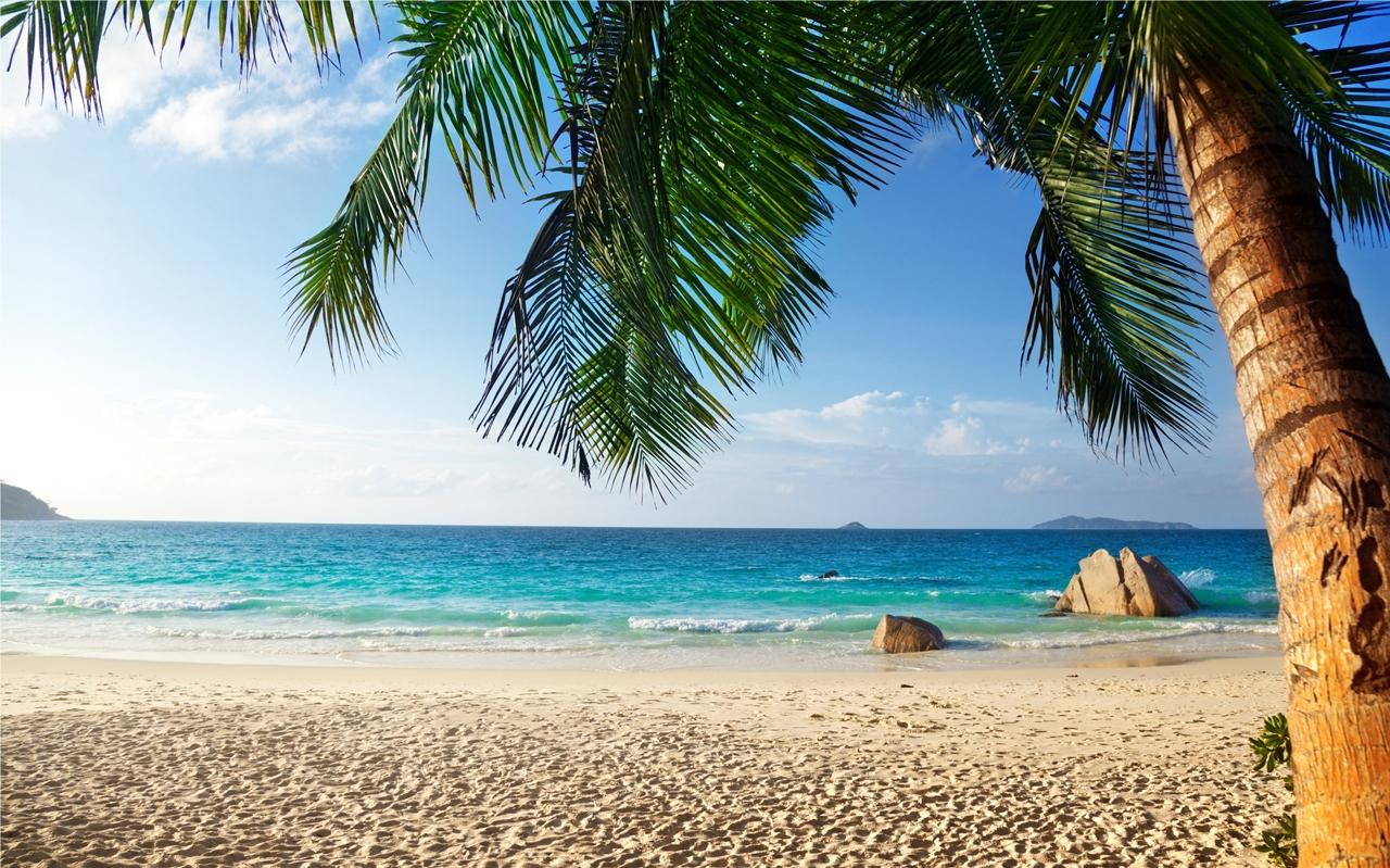 Beautiful beaches 28