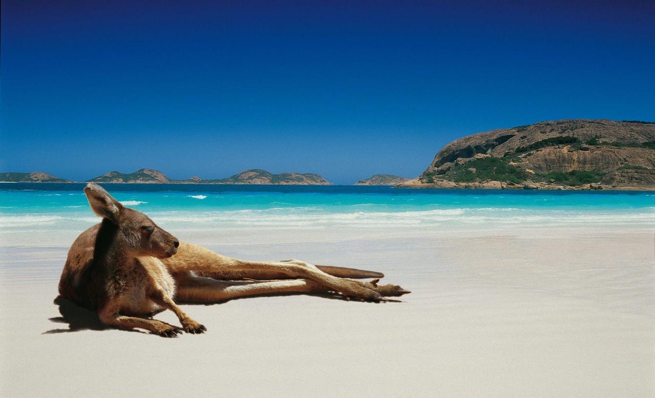 Beautiful beaches 29