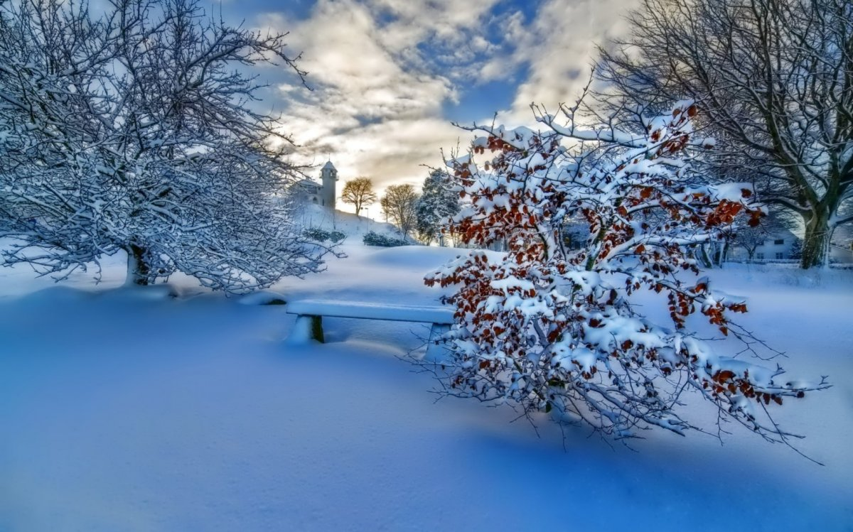 Beautiful pictures of winter 01
