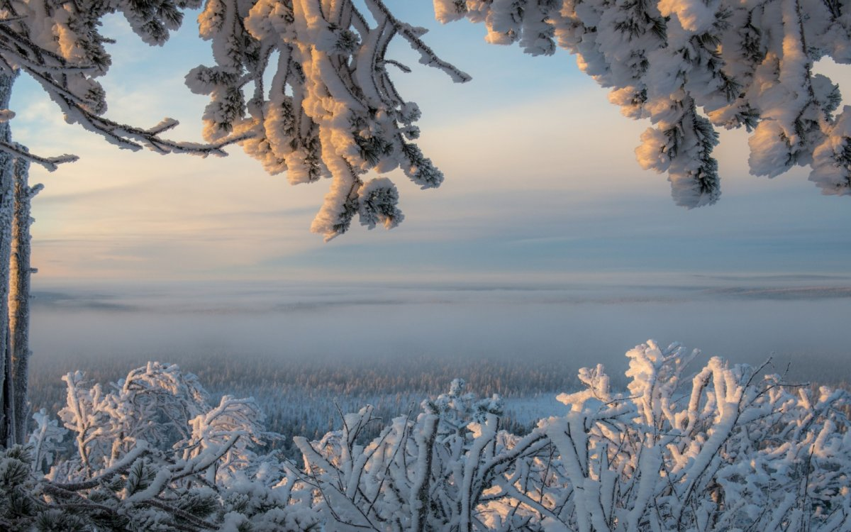 Beautiful pictures of winter 14