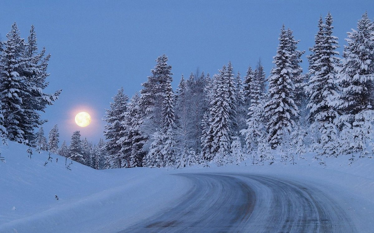 Beautiful winter photos 20