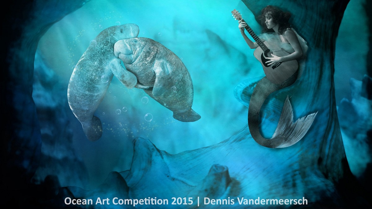 Best underwater photos 2015 show the mysteries of marine life 15