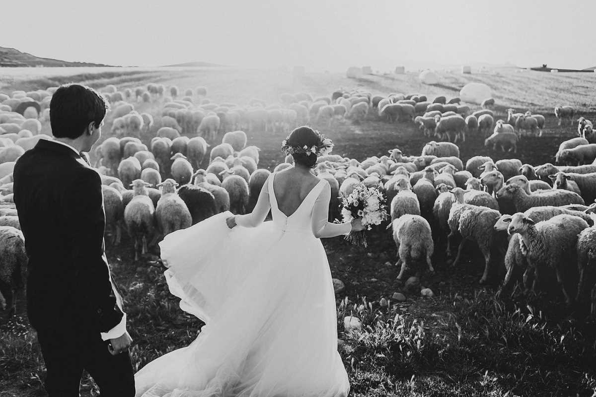 Best wedding photos of the 2015 version of the Junebug Weddings 12