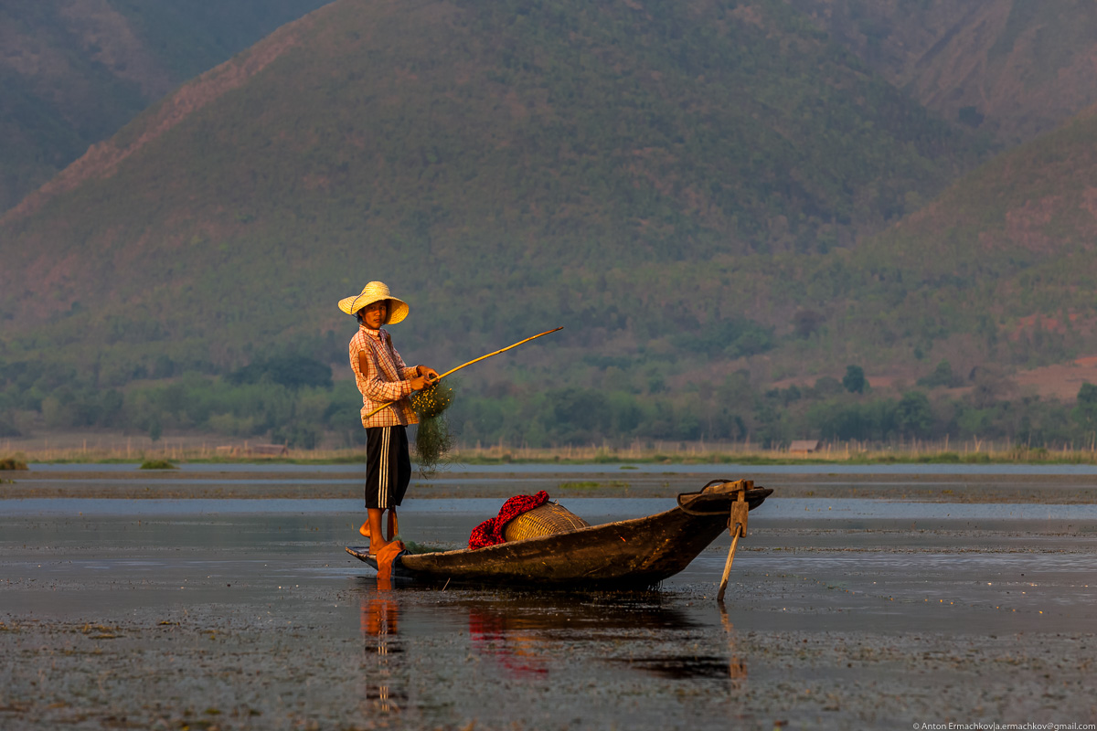 Burma. The fishermen of Inle lake 08
