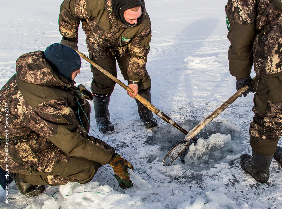 Fighting the poachers on lake Baikal 05