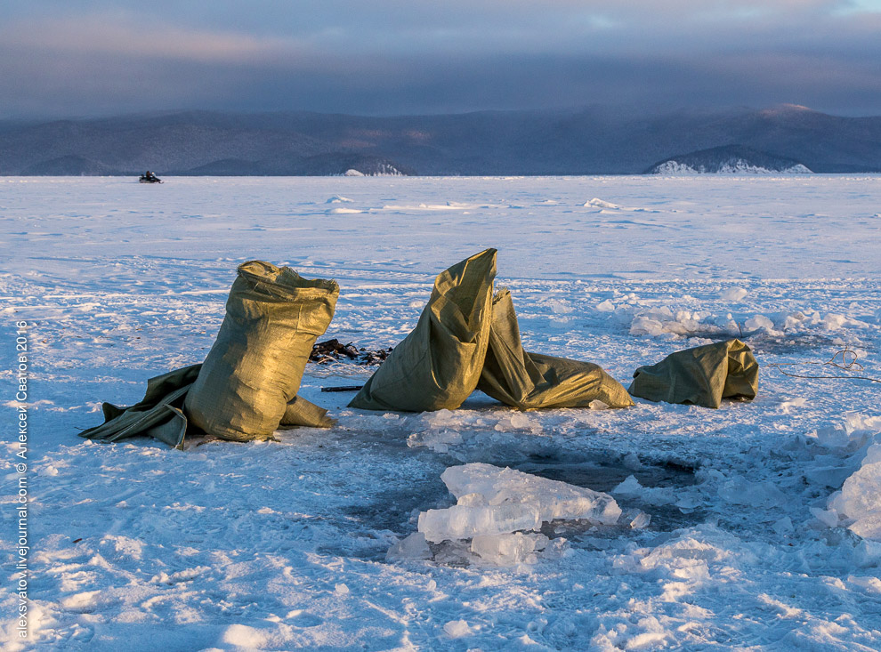 Fighting the poachers on lake Baikal 16