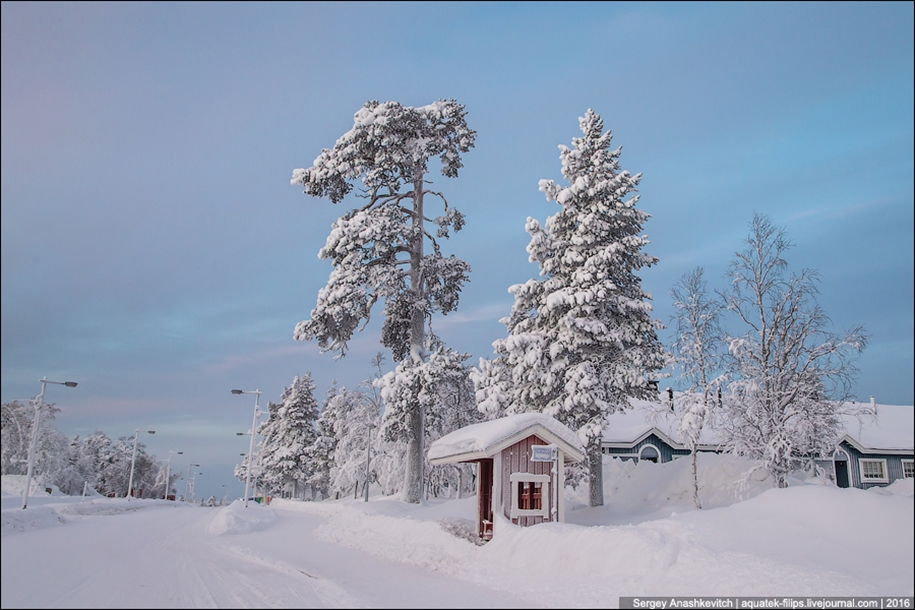 Finnish settlement in the Arctic 10