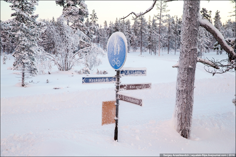 Finnish settlement in the Arctic 20