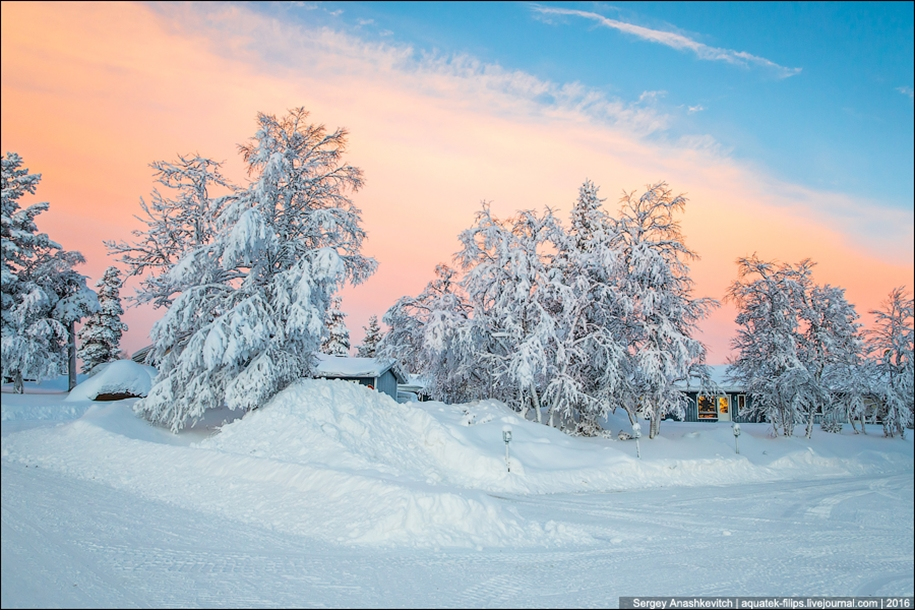 Finnish settlement in the Arctic 31