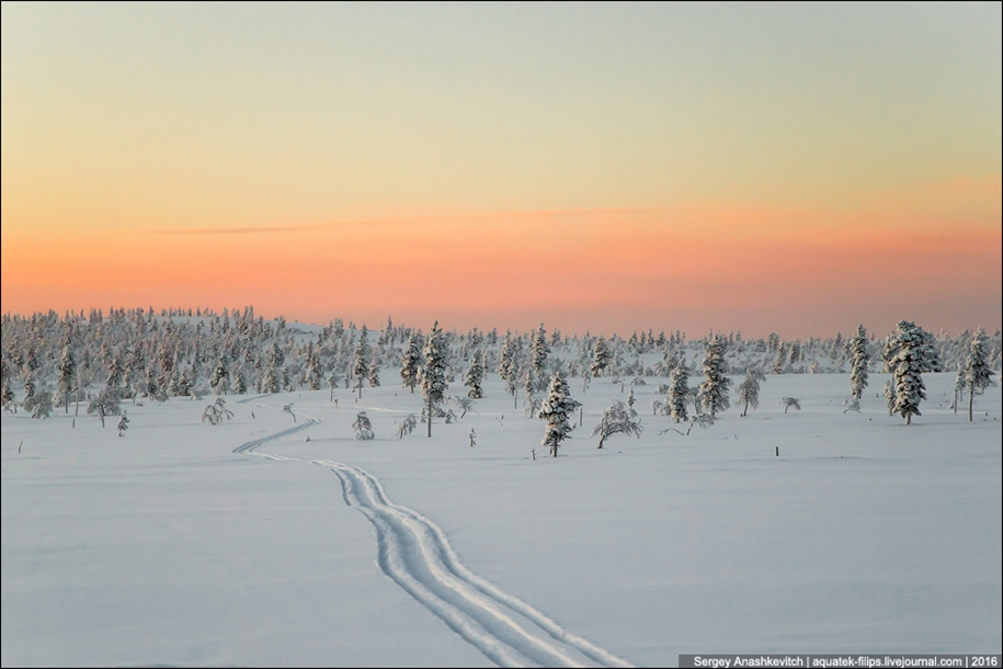 Finnish settlement in the Arctic 38