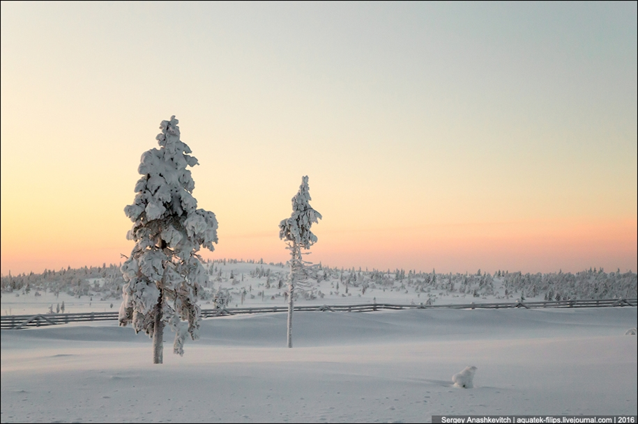 Finnish settlement in the Arctic 39