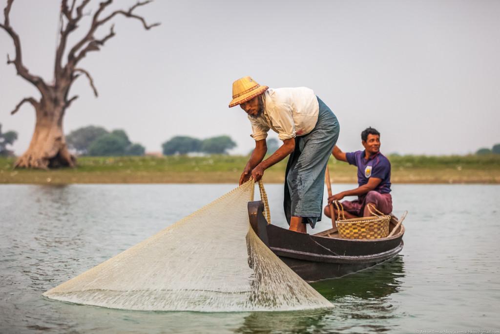рыбак закидывает улов