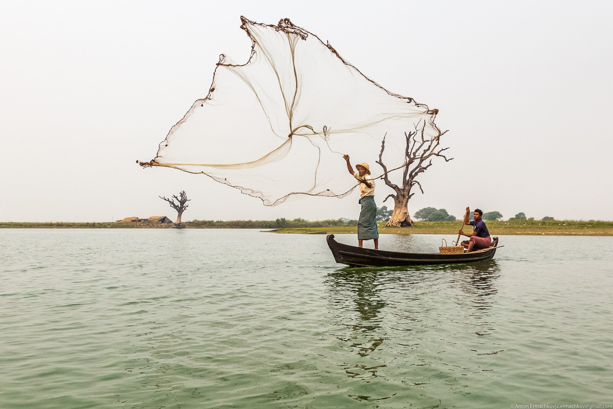 Fishing in Burma or the dance network 11