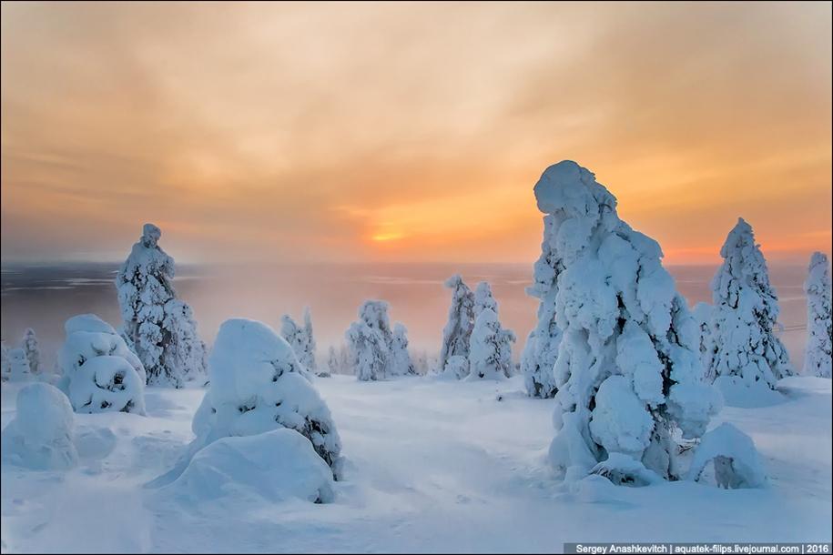 Frosty Lapland 02