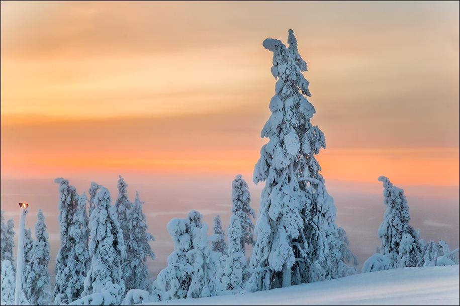 Frosty Lapland 05