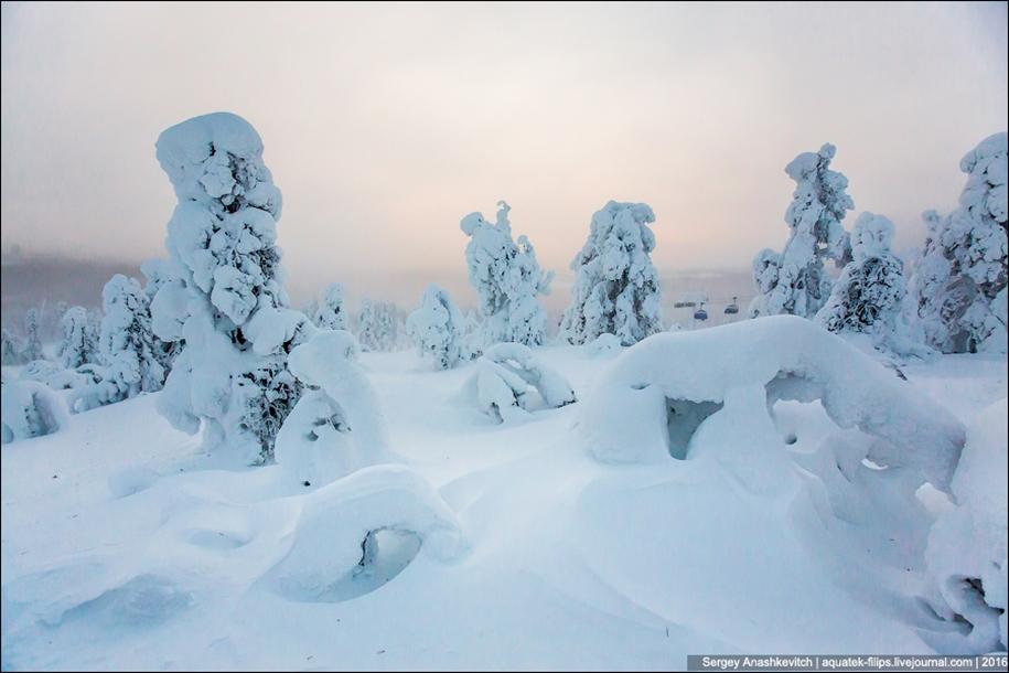 Frosty Lapland 06