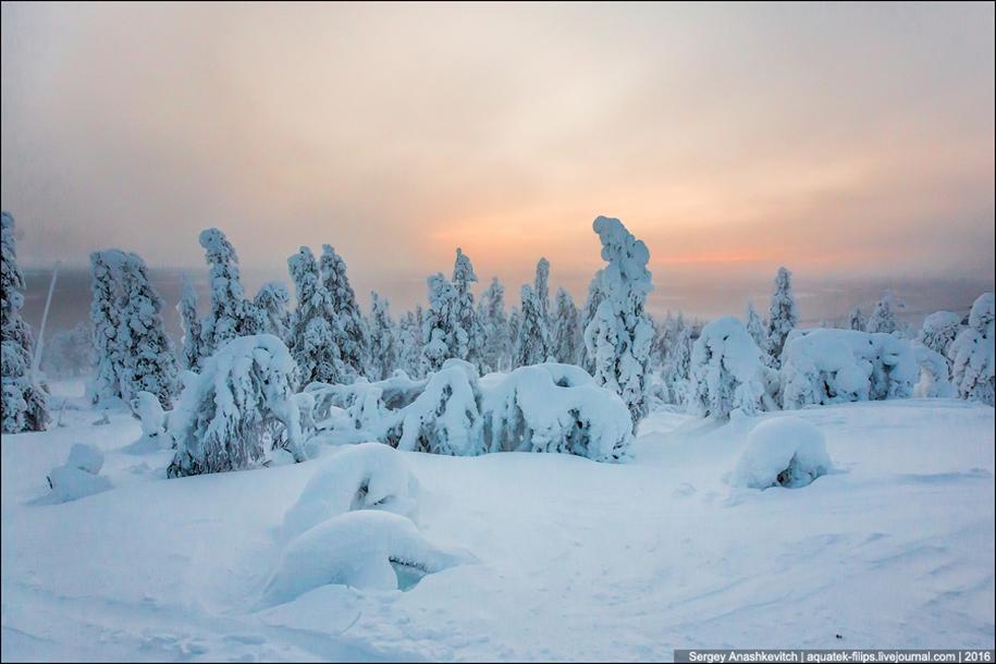 Frosty Lapland 08