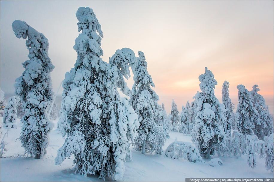 Frosty Lapland 09