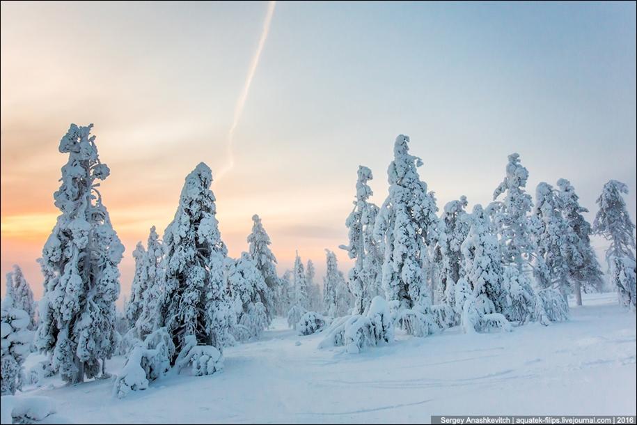 Frosty Lapland 11