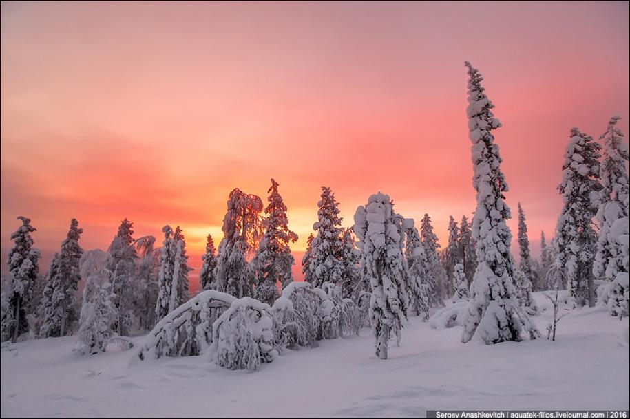 Frosty Lapland 14