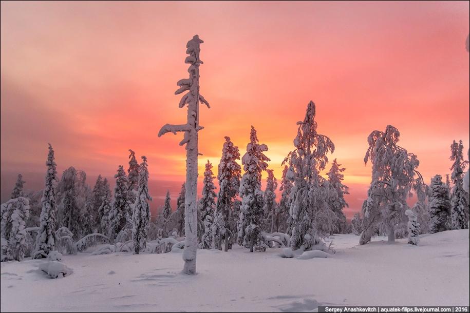 Frosty Lapland 16