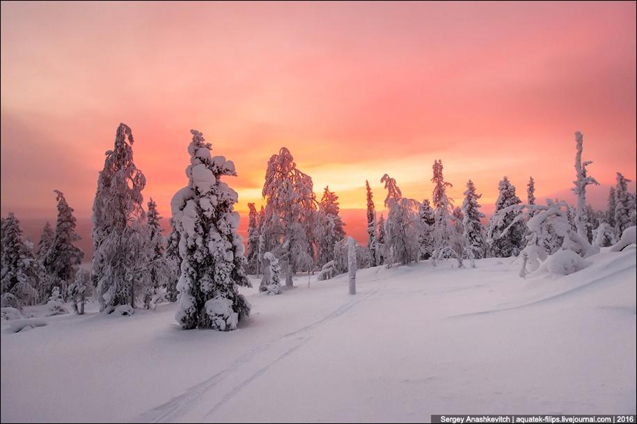 Frosty Lapland 17
