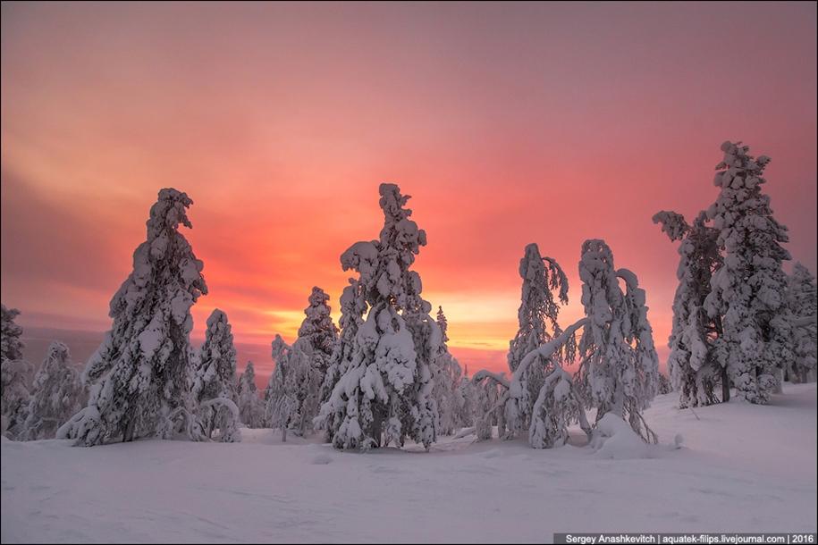 Frosty Lapland 19