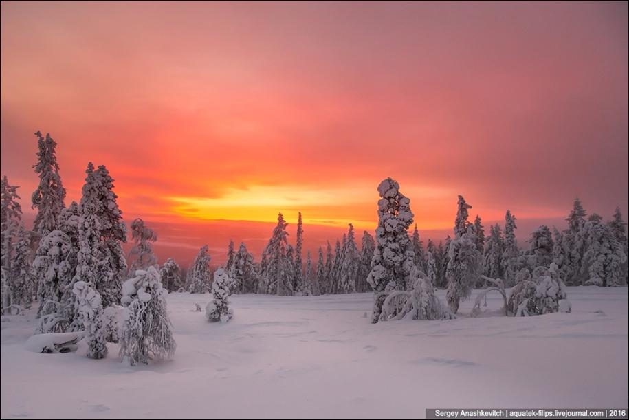 Frosty Lapland 20