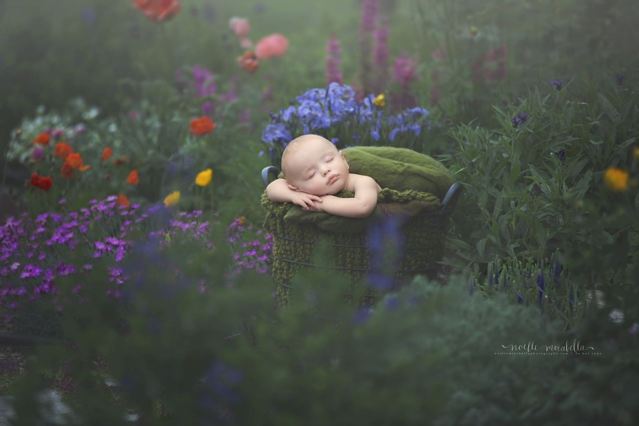 Magical images of little children - the wonder through the eyes of mom 03