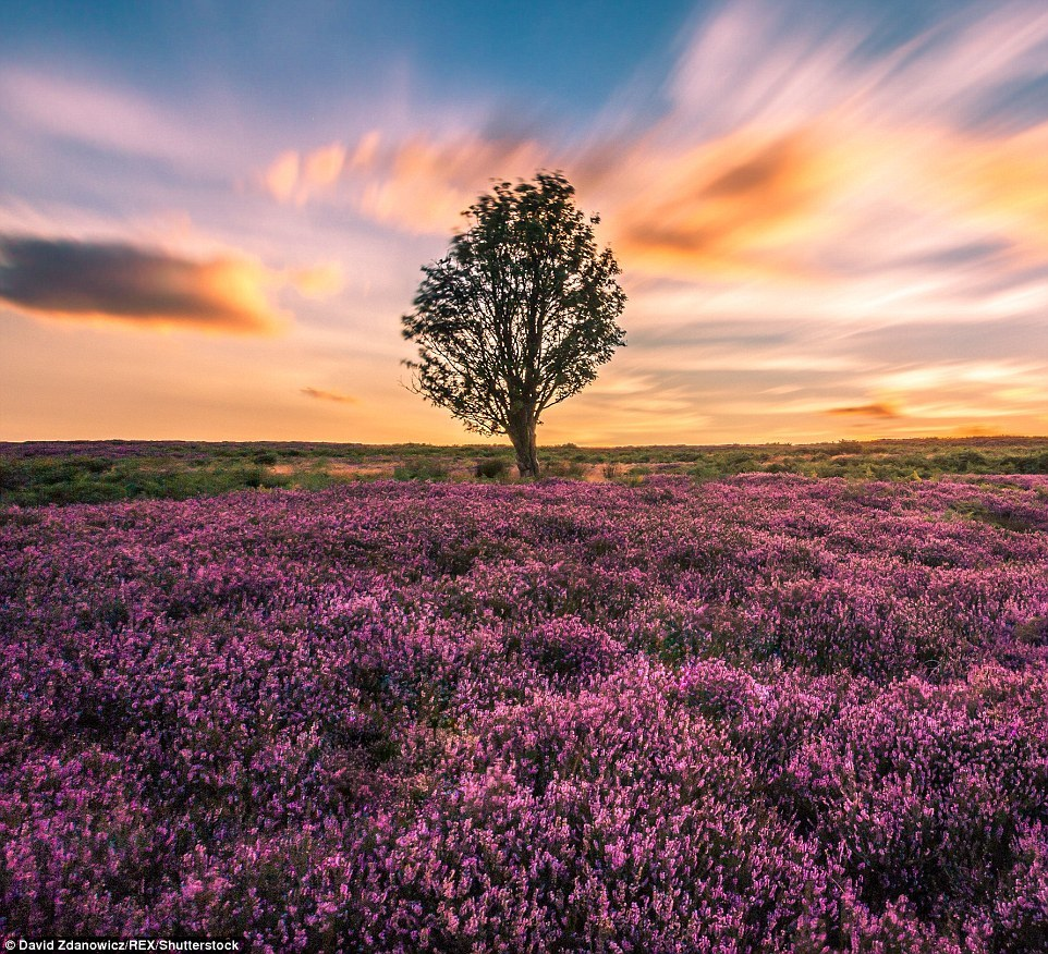 Magnificent scenery of the UK in photos of David Zdanovich 20