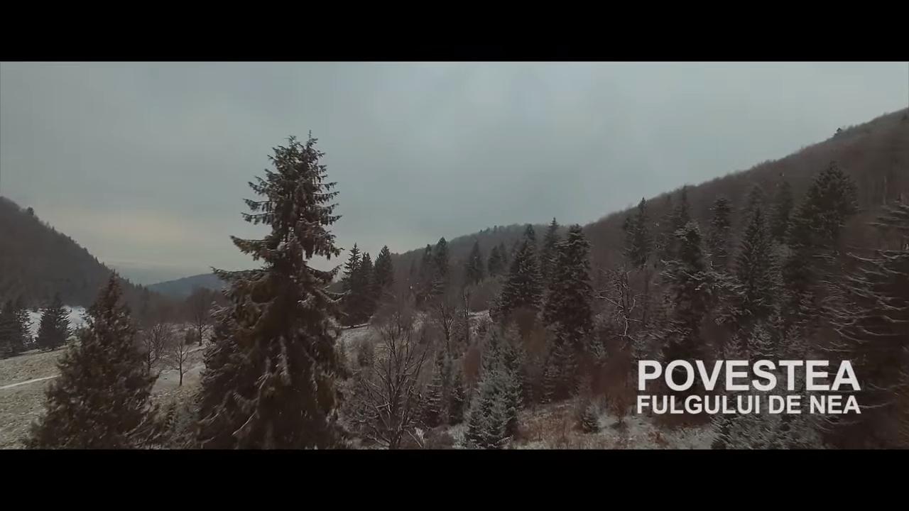 Видео «История снежинки»: Молдова с высоты птичьего полета