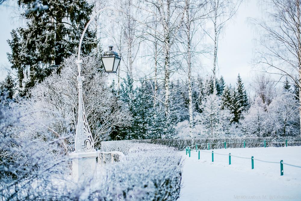 Pavlovsk Park 10