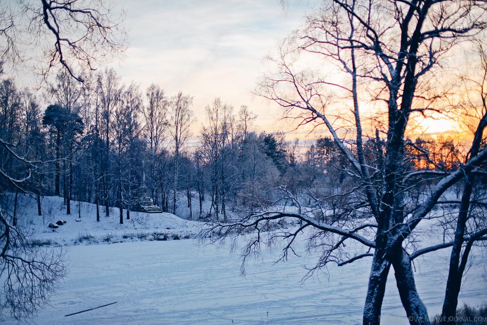 Pavlovsk Park 15