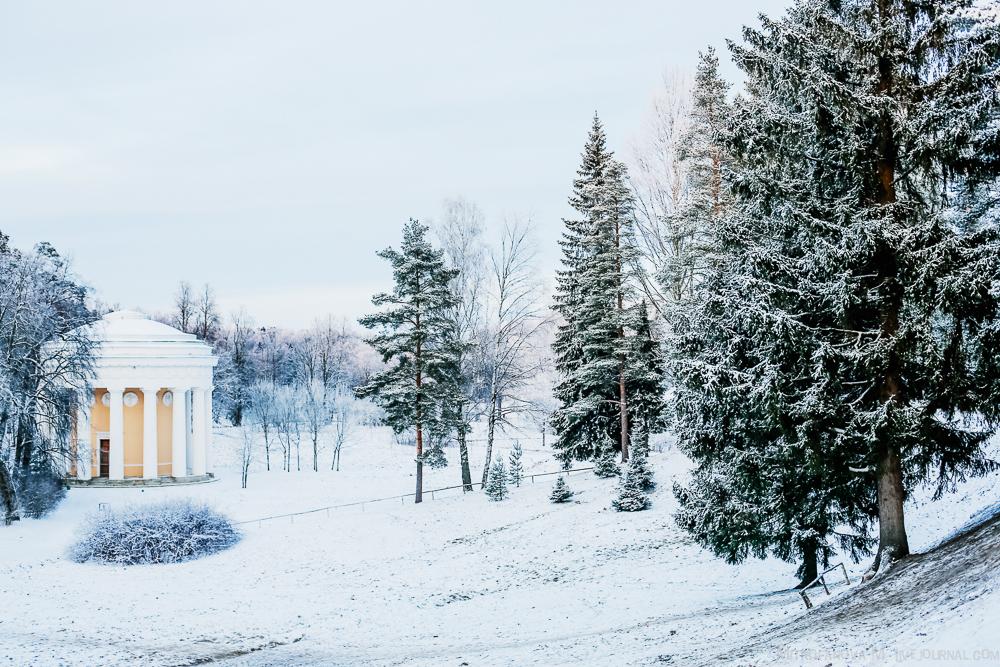 Pavlovsk Park 17