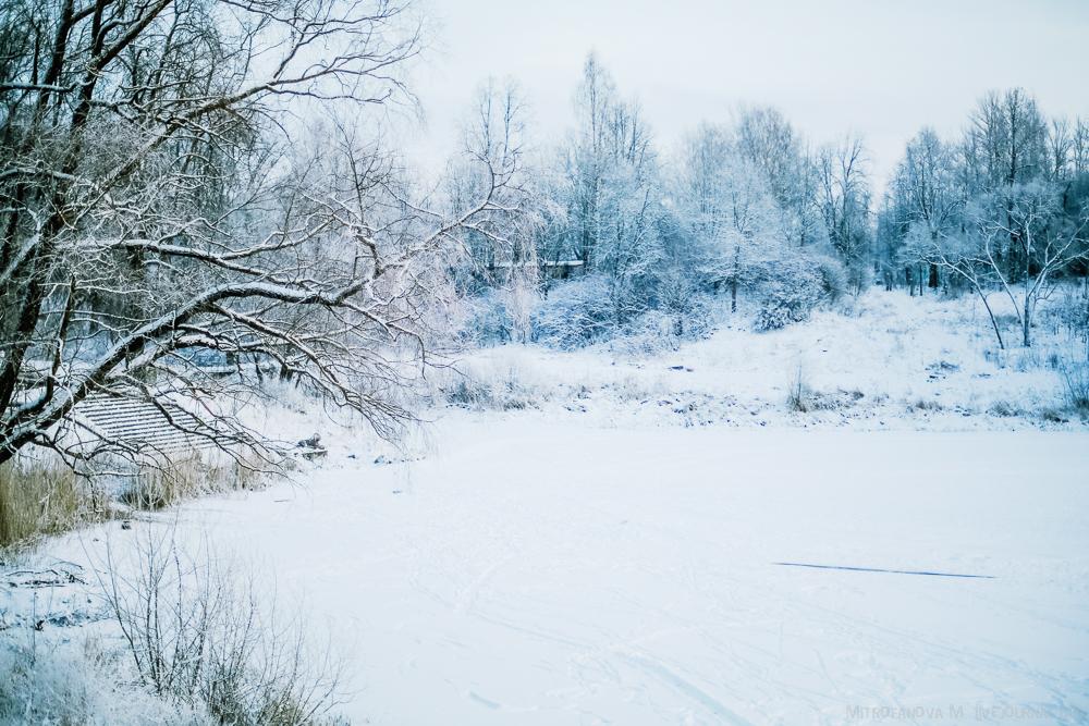Pavlovsk Park 19