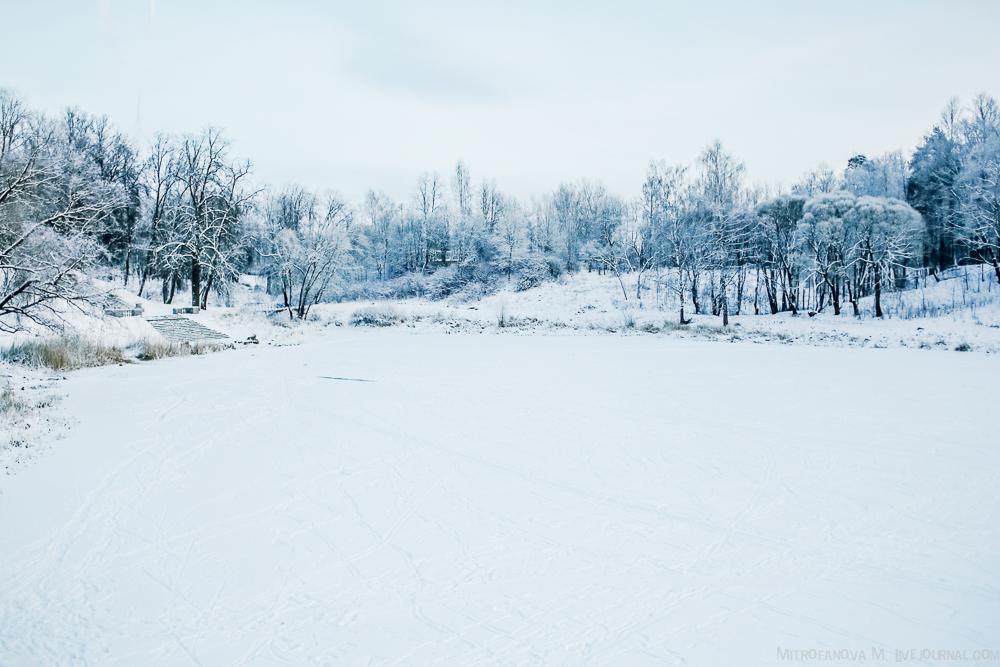 Pavlovsk Park 29