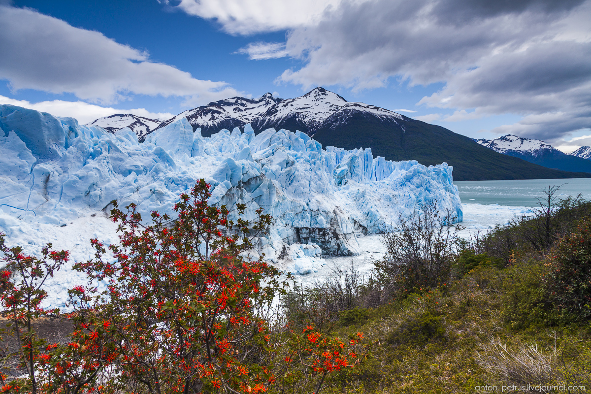 Perito Moreno glacier is the most photogenic in the world 12