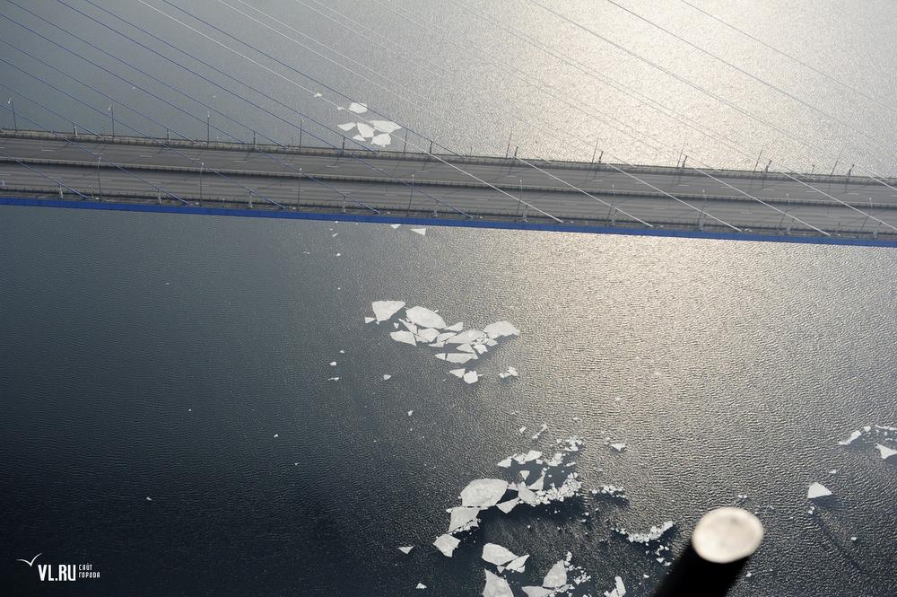 Russian_bridge-_in_Vladivostok 07