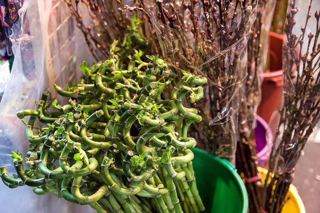 Singapore's Chinatown prepares for Chinese New Year 14