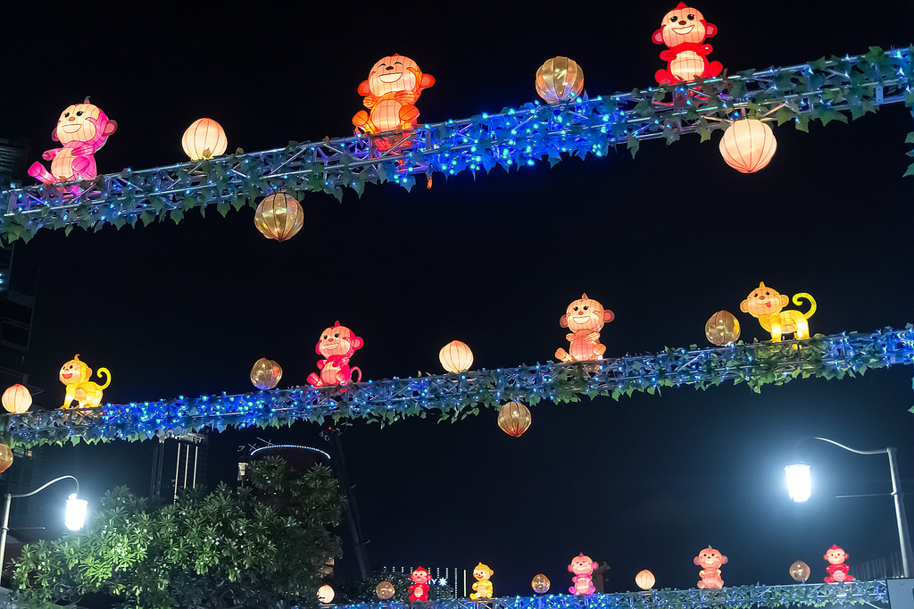 Singapore's Chinatown prepares for Chinese New Year 20